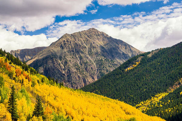 Photograph - Aspen Slope by Michael Blanchette