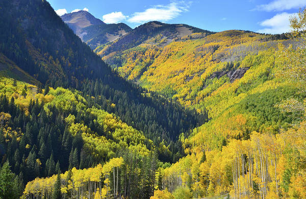 Photograph - Aspen Valley Along Scenic Byway 145 by Ray Mathis