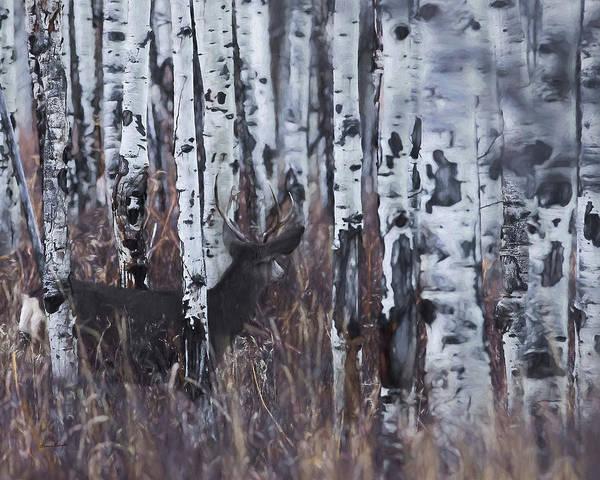 Colorado Wildlife Digital Art - Aspen View 4 by Ernie Echols