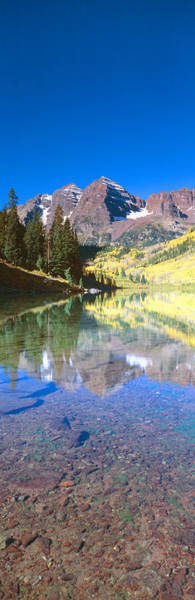 Contour Photograph - Aspens And Morning Light, Maroon Bells by Panoramic Images