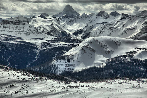 Photograph - Assiniboine In The Middle by Adam Jewell