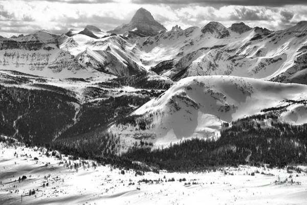 Photograph - Assiniboine View From Sunshine Village Black And White by Adam Jewell