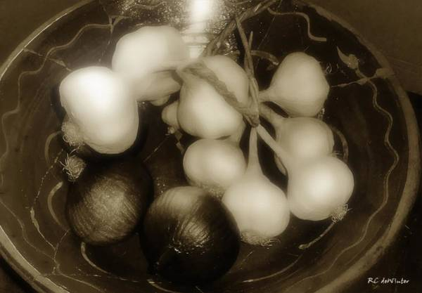 Photograph - Assorted Alliums by RC DeWinter