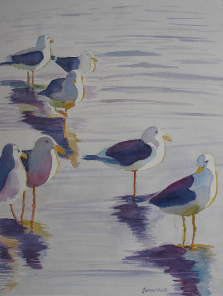 Gull Painting - Assorted Gulls by Jenny Armitage
