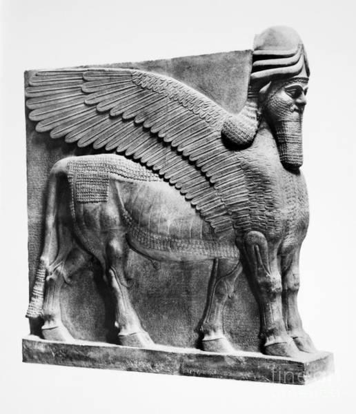 Photograph - Assyria: Bull Scultpure by Granger