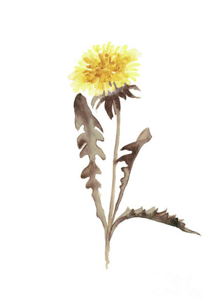 Wall Art - Painting - Asters Flowers, Abstract Flower Yellow Wall Decor, Dandelion Watercolor Painting by Joanna Szmerdt