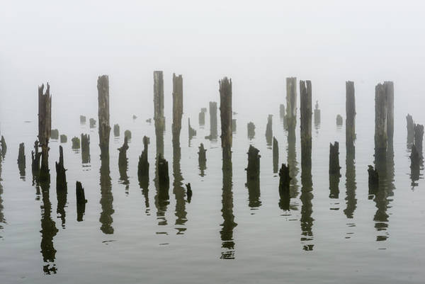 Photograph - Astoria Pilings by Robert Potts