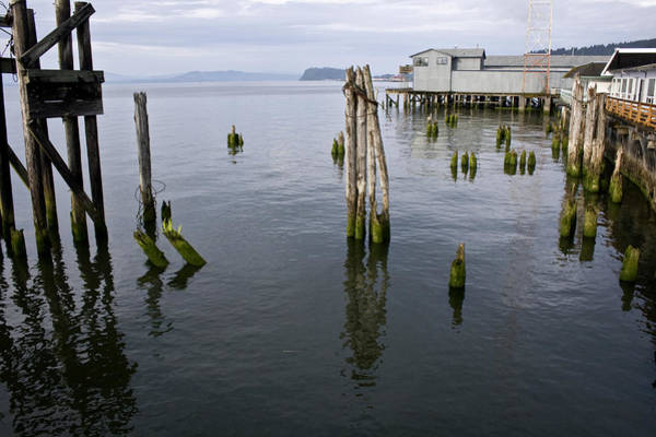 Photograph - Astoria Waterfront by Lee Santa