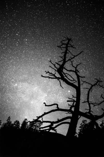 Photograph - Astrophotography Night Black And White Portrait View by James BO Insogna