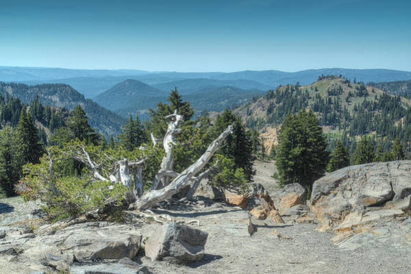 Photograph - At 8000 Ft by Peter Dyke