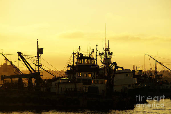 Photograph - At Days End by Linda Shafer