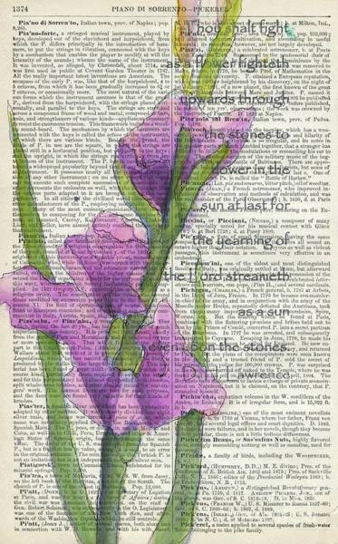 Gladiolus Painting - At Last In The Sunlight 2 by Maria Hunt