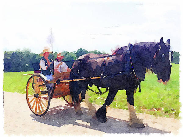Horse And Buggy At Mount Vernon Art Print