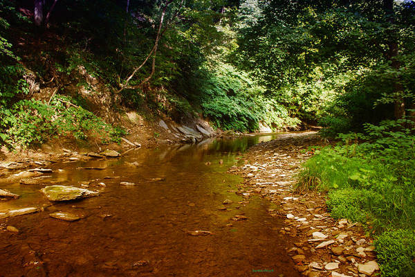 Photograph - At Peace Stream by Roberta Byram