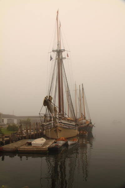 Photograph - At Schooner Wharf by Doug Mills