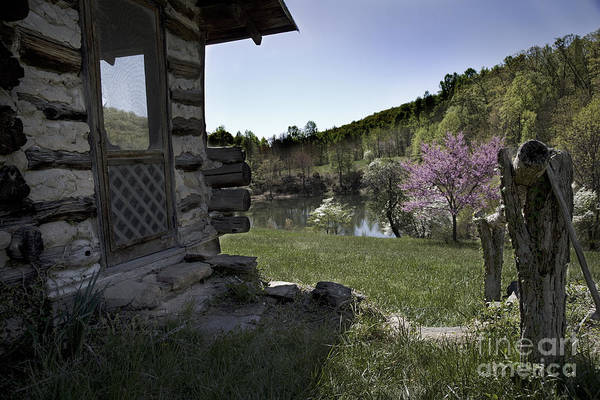 Photograph - At The Cabin by Pete Hellmann