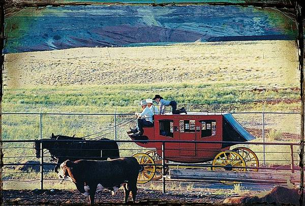 Stagecoach Photograph - At The Cody Rodeo by Jan Amiss Photography