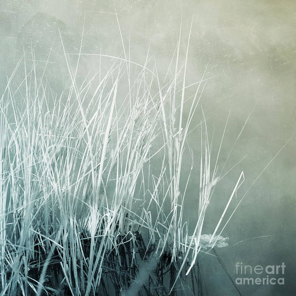 Wall Art - Photograph - At The Lake 2 by Priska Wettstein