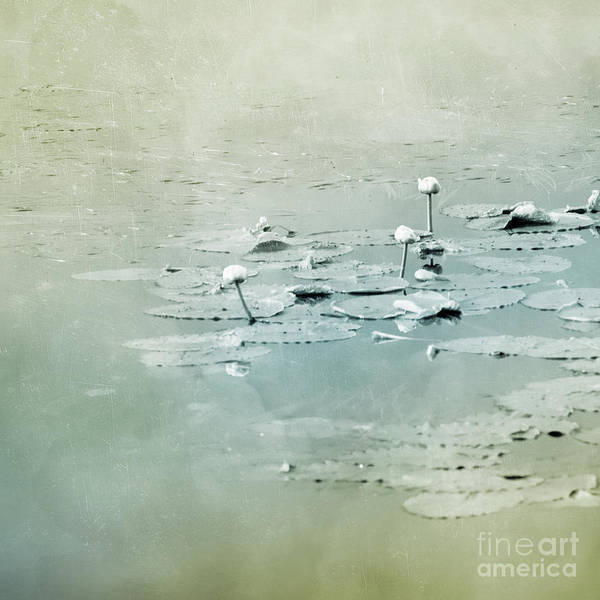Wall Art - Photograph - At The Lake 4 by Priska Wettstein