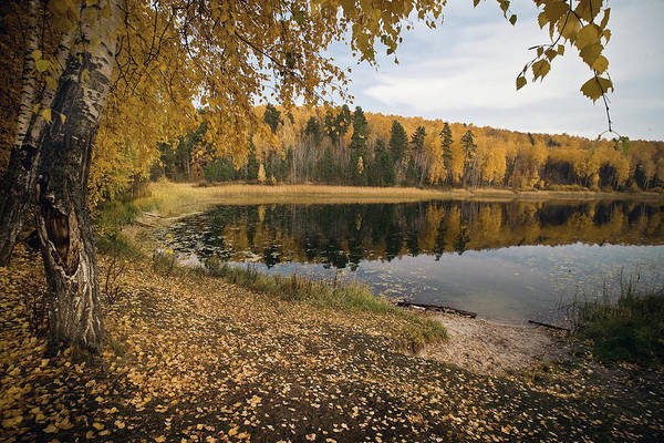 From Russia With Love Wall Art - Photograph - At The Lake by Yurii Karpov