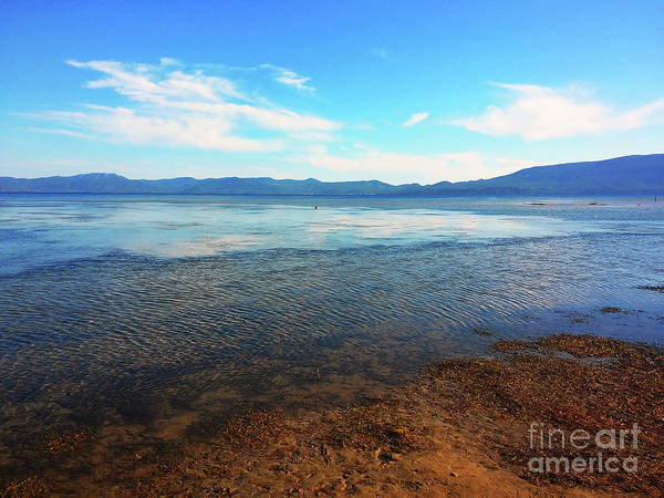 Wall Art - Photograph - At The Mouth Of The Neretva by Jasna Dragun