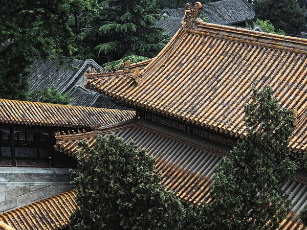 Photograph - Roofscape, Beijing 2011 by Chris Honeyman
