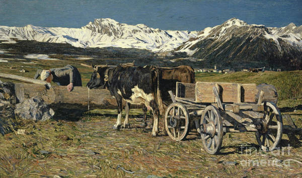 Pulling Painting - At The Watering Place, Cows In The Yoke by Giovanni Segantini