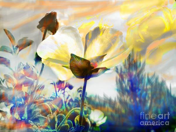 Atardecer En Primavera Art Print