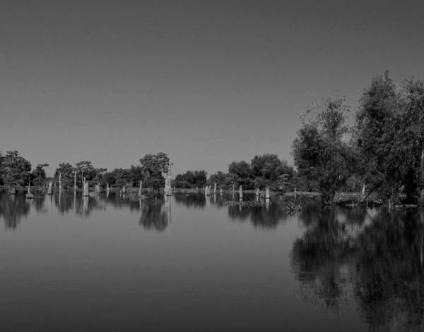 Photograph - Atchafalaya Basin 15 by Maggy Marsh