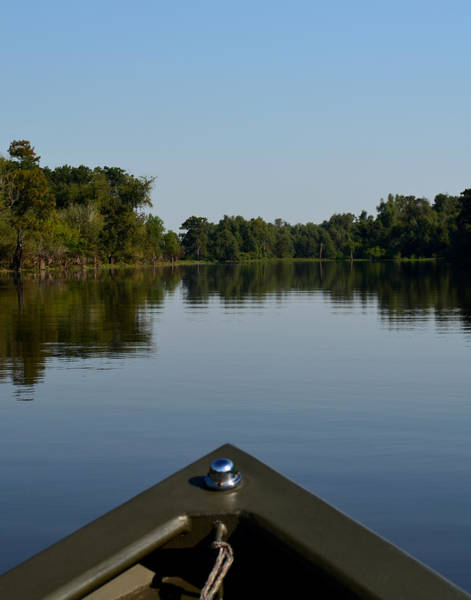 Photograph - Atchafalaya Basin 6 by Maggy Marsh