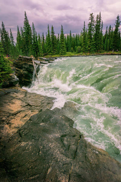 Whitewater Falls Photograph - Athabasca Falls Jasper National Park  by Joan Carroll