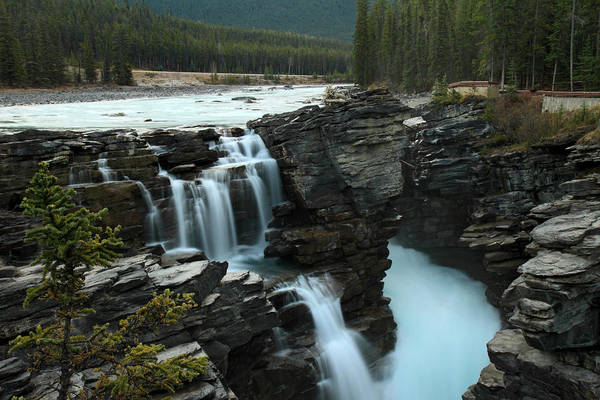 Photograph - Athabasca Falls In Jasper National Park by Pierre Leclerc Photography