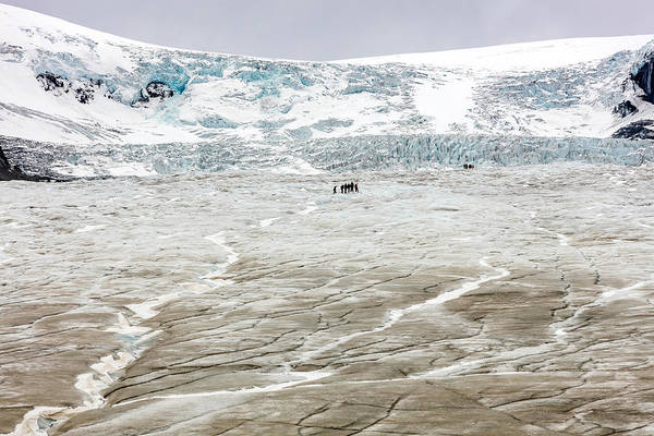 Photograph - Athabasca Glacier With Guided Expedition by Pierre Leclerc Photography