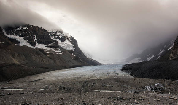 Photograph - Athabasca by Kristopher Schoenleber