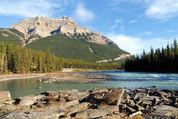Photograph - Athabasca River by Larry Ricker