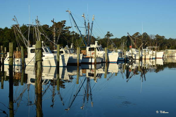 Photograph - Atlantic Harbor by Dan Williams