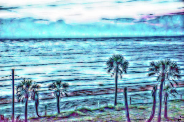 Photograph - Atlantic Ocean And Palm Trees by Gina O'Brien