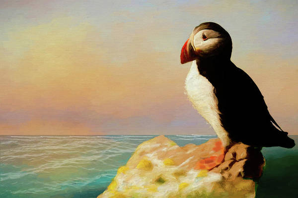 Painting - Atlantic Puffin Overlooking The Sea by Ericamaxine Price