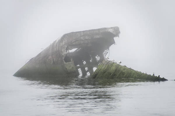 Wall Art - Photograph - Atlantus Shipwreck In The Fog by Bill Cannon