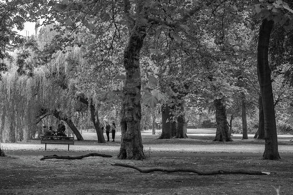 Wall Art - Photograph - Atmospheric Scene At The Whitworth Park by Iordanis Pallikaras
