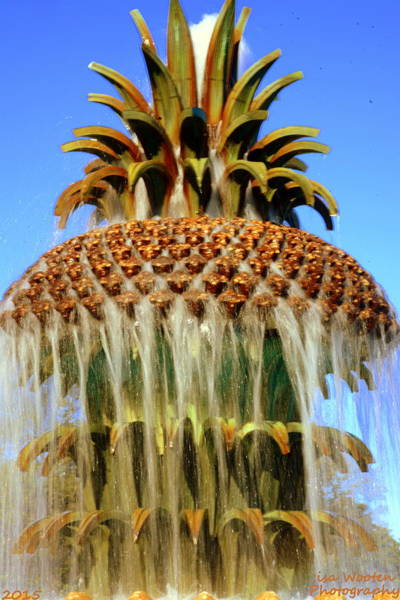 Photograph - Atop Pineapple Fountain Charleston Sc by Lisa Wooten