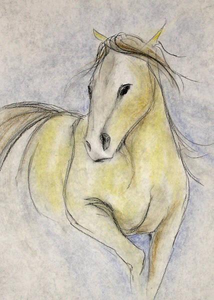 Warmbloods Drawing - Attitude by Jennifer Fosgate