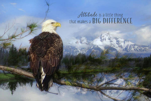 Wall Art - Photograph - Attitude Makes A Difference by Lori Deiter
