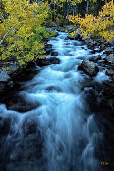 Photograph - Auatumn On Bishop Creek II by Stuart Gordon