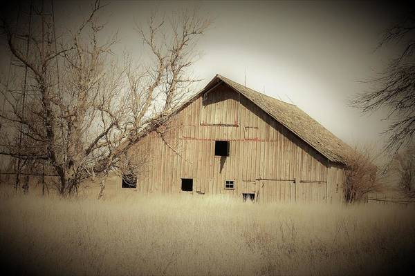 Wall Art - Photograph - Auburn Barn by Toni Grote