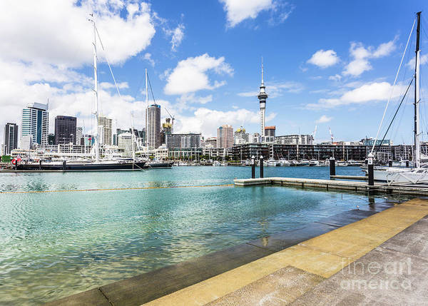 Photograph - Auckland Marina In New Zealand by Didier Marti