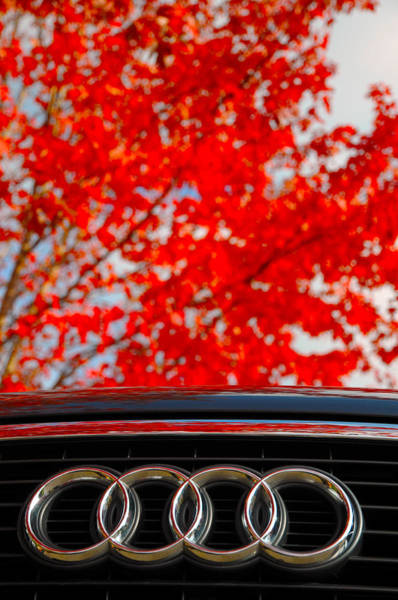 Photograph - Audi by Dragan Kudjerski