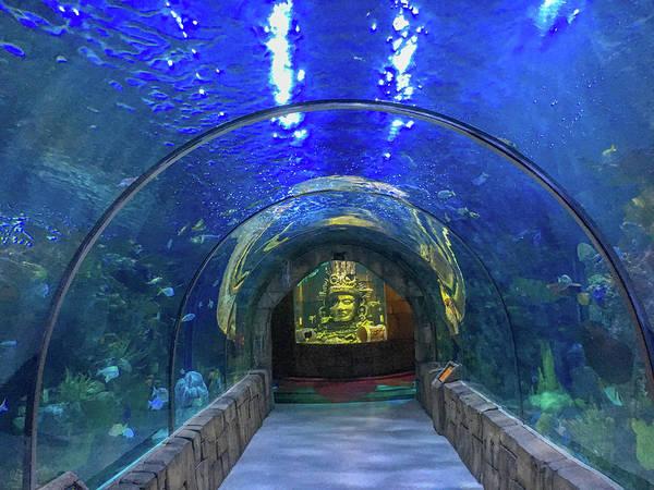 Wall Art - Photograph - Audubon Aquarium, New Orleans by Art Spectrum