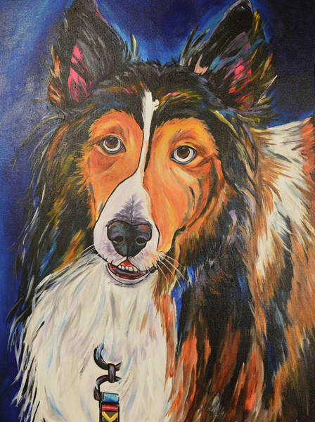 Painting - Augie by Patti Schermerhorn