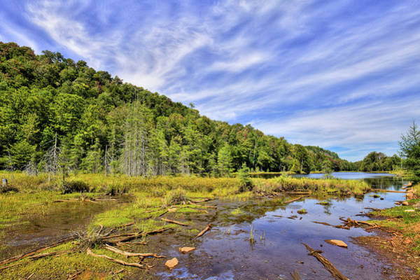 Photograph - August At Bald Mountain Pond by David Patterson